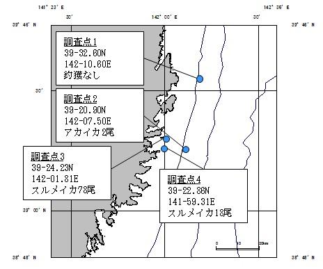 20180921squid_fishing001