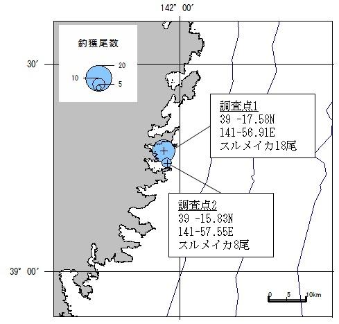 20181018squid_fishing001