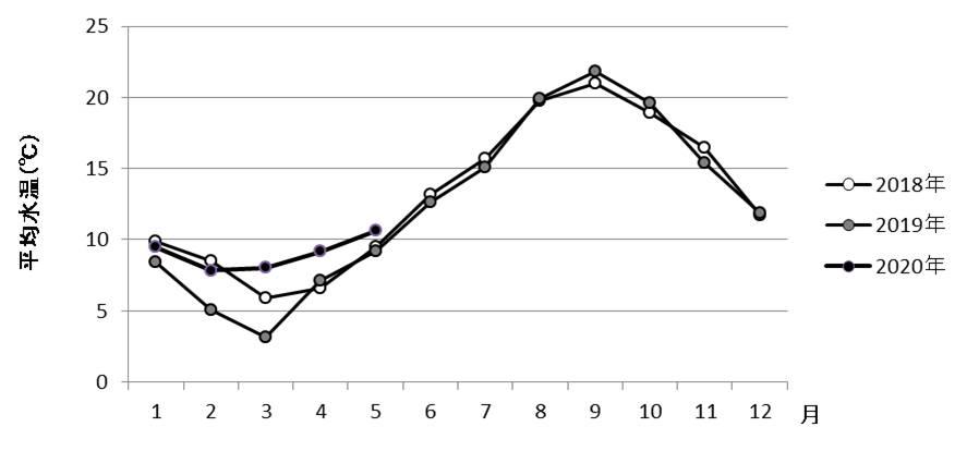 山田湾平均水温