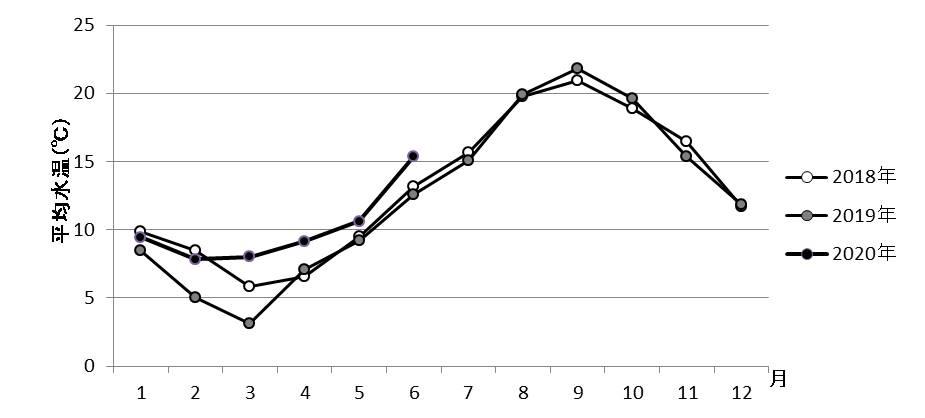 図1 山田湾定点における平均水温(5・10・15m)の推移