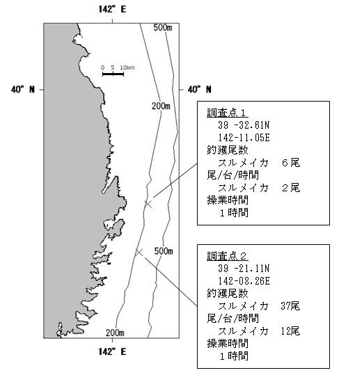 20200721squid_fishing001