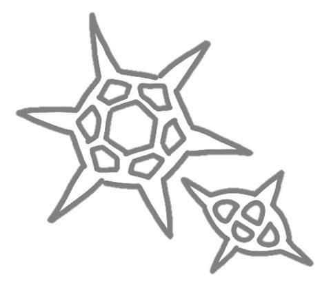 シリカヒゲムシ