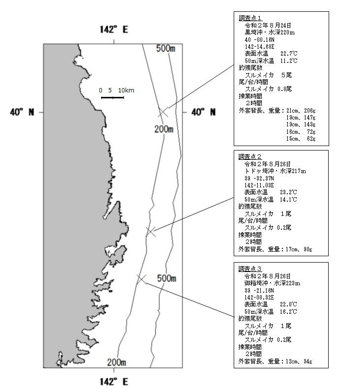 20200901squid_fishing004