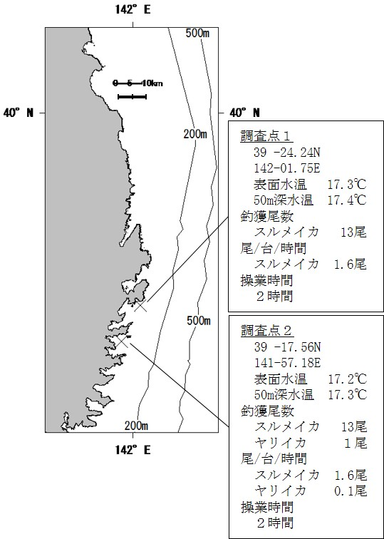 20201102squid_fishing001